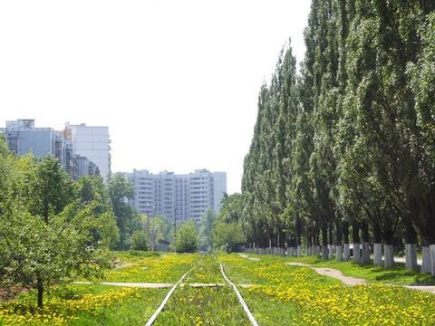 Картинки город и природа